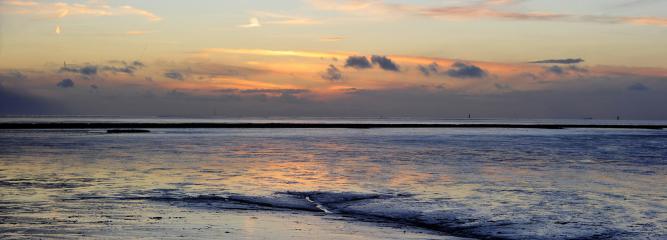 Nordsee Minsen